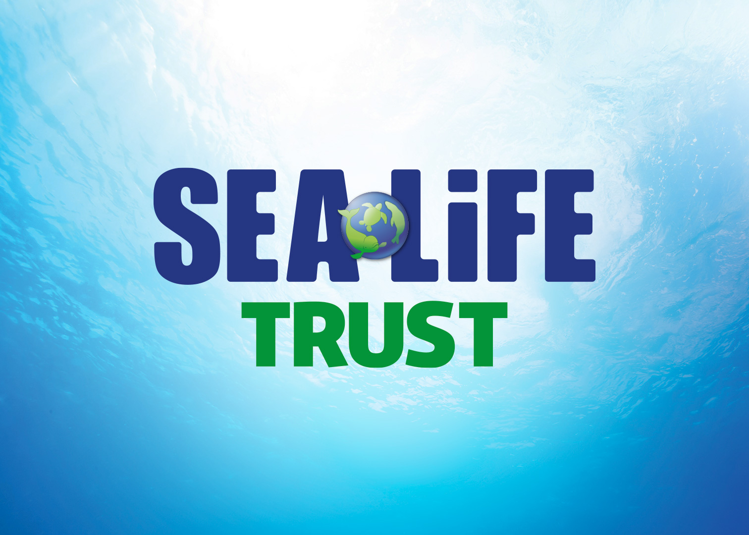 Gardaland SEA LIFE Aquarium - SEA LIFE Trust